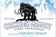 """Кубок Черноземья """"Снежный мамонт"""""""