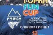 ГОРКА FUN CUP